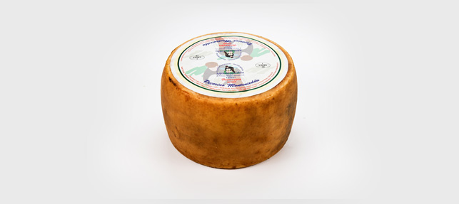 montenieddu-pecorino
